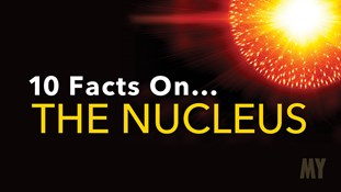 10 Facts On... The Nucleus