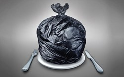 Shifting Habits, Shifting Minds: Food Waste in the 21st Century