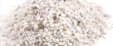 Perlite in the Garden: To Use or Not to Use?