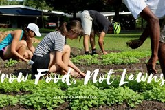 Grow Food, Not Lawns with the Fleet Farming Method