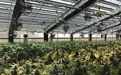 How to Use a Climate Battery to Heat and Cool Your Grow