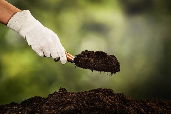 6 Steps for Preparing Healthy Soil For Growing Vegetables
