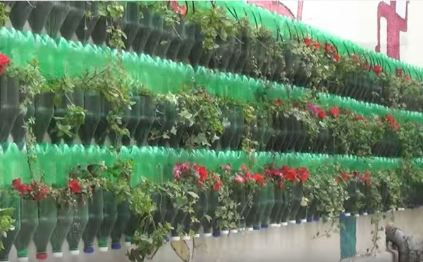 Hanging vegetable gardens what vegetables can be grown upside down - Upside down gardening ...