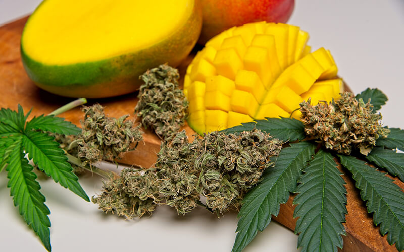 Cannabis flower and leaves on a board with sliced mangoes.