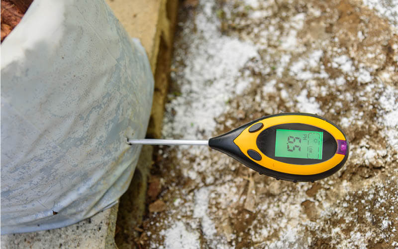Soil pH meter reading the pH of a plant in a container garden.