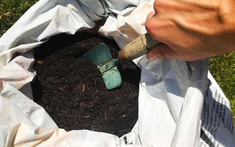 Grower scooping potting soil from a bag