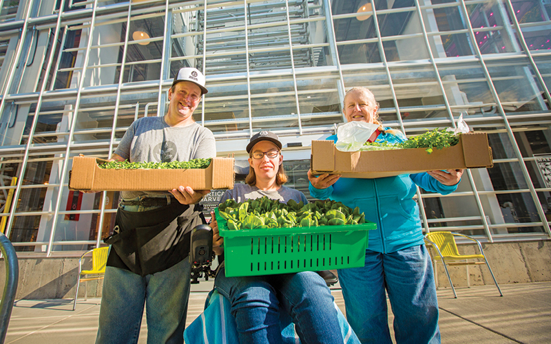 Vertical Harvest Farms employees