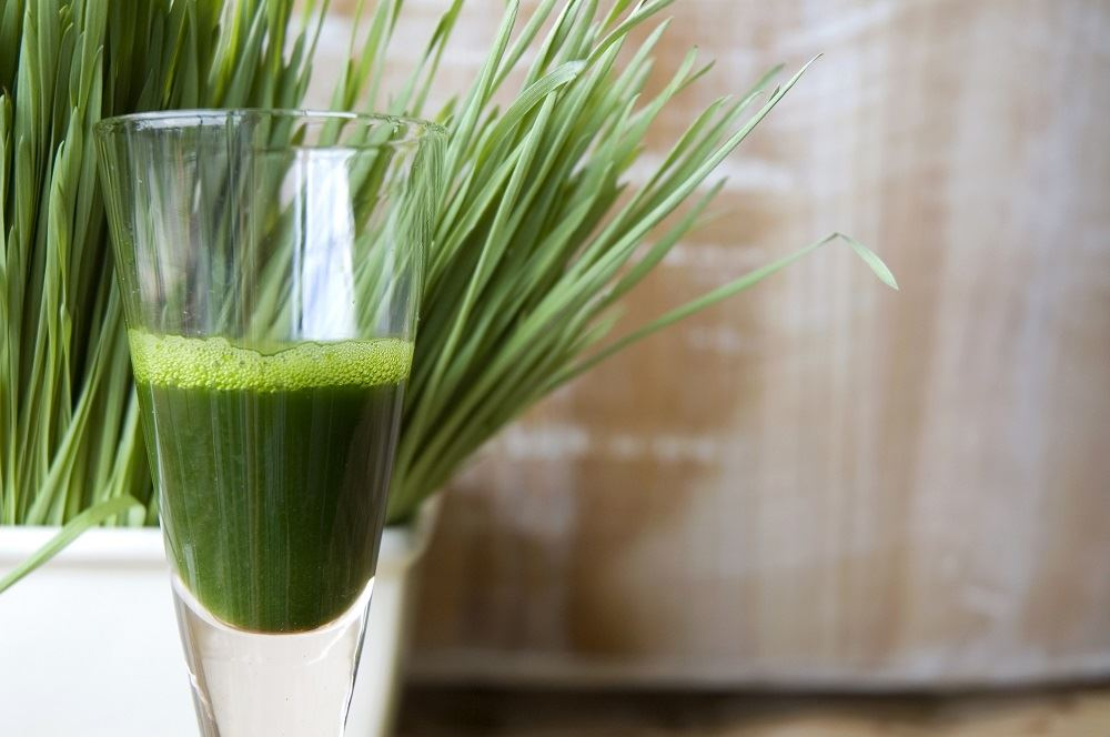 Nolvadex on cycle benefits of wheatgrass