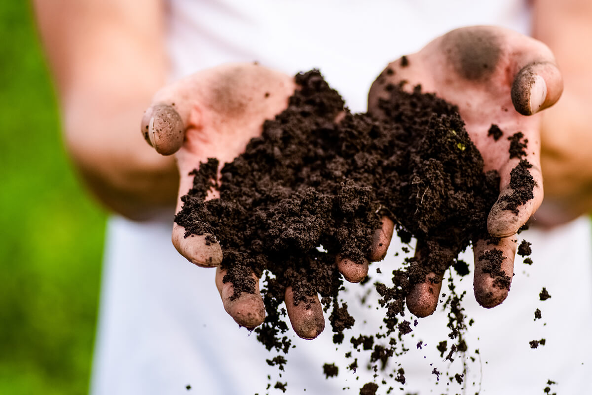 Hands pouring soil
