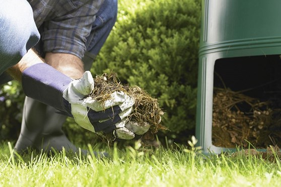 Building the Perfect Organic Fertilizer