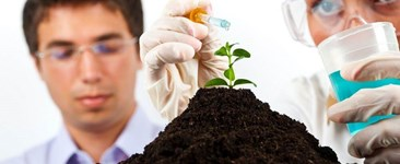 The Essential Plant Nutrients