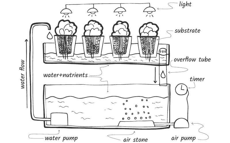 diagram of ebb and flow system