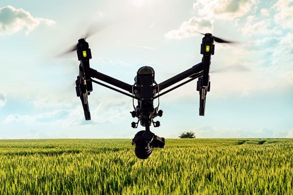 Ready, Tech, Grow: Emerging Technology in Agriculture