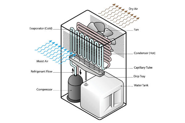 Diagram of a domestic dehumidifier showing the fan, compressor, coils, and water tank