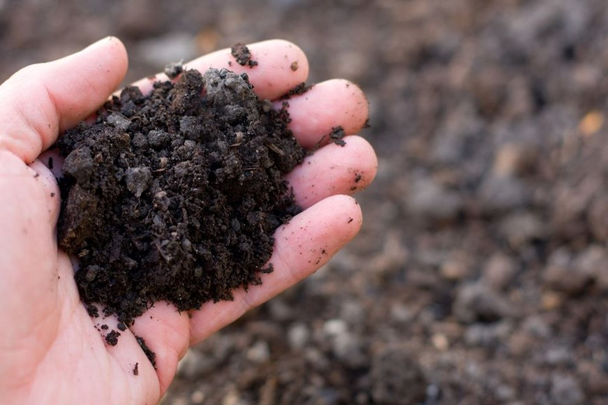 How to Manage Soil Fertility