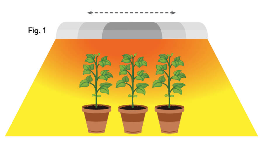 Illustration of light movement which ensures more of the leaf surface interacts with the grow light. This mimics how plants naturally receive light