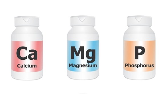 Are All Calcium/Magnesium Supplements Alike?