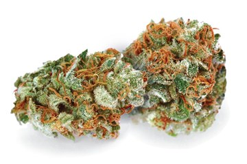 What is Lemon Kush? - Definition from Maxyield