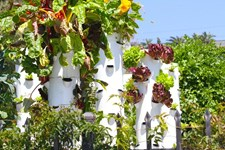 Grow Your Own Food Tower