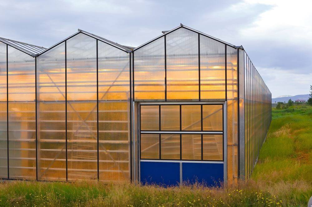 Gear Up Your Greenhouse