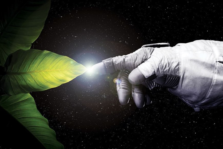 Food and the Final Frontier: How Researchers Intend to Grow Plants in Space