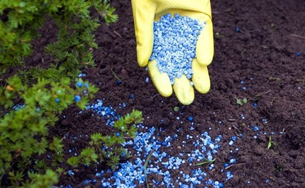 The Difference Between Organic and Synthetic Plant Fertilizers
