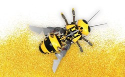 The Birds and the Bees of Hydroponics: How to Pollinate Plants