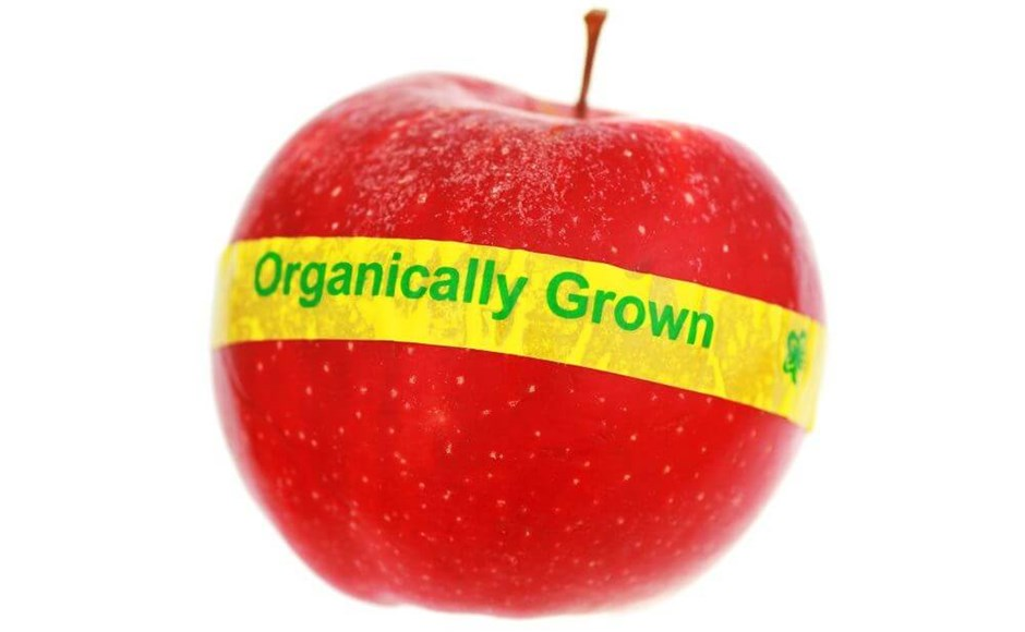 Is Organic Hydroponics Always Better?