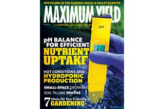 Maximum Yield AUS-NZ Issue #1 2021
