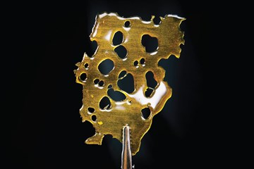 Getting to the Good Stuff: Cannabis Extraction Methods