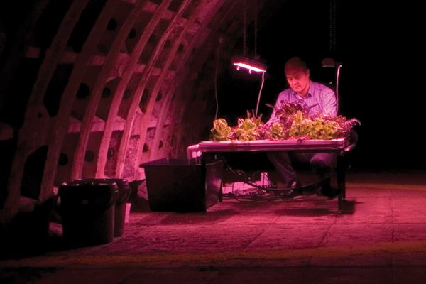 Farm to Table: Growing Underground in London