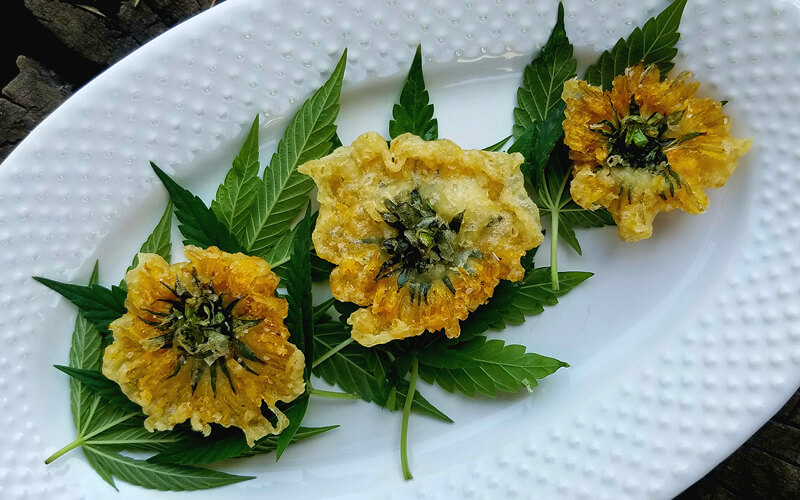 Country Fried Dandelions with Smoky Ranch Dip