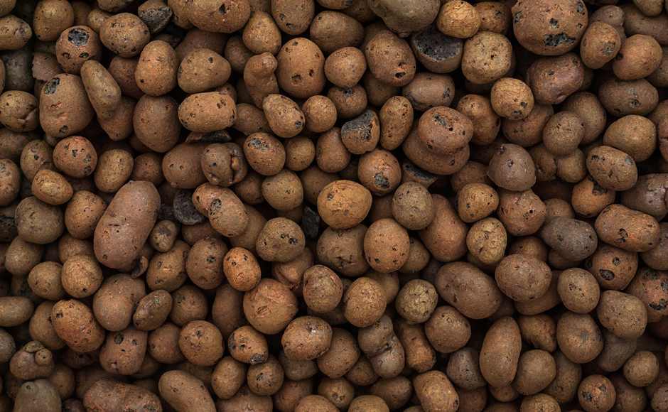 Expanded clay pebbles hydroponic media