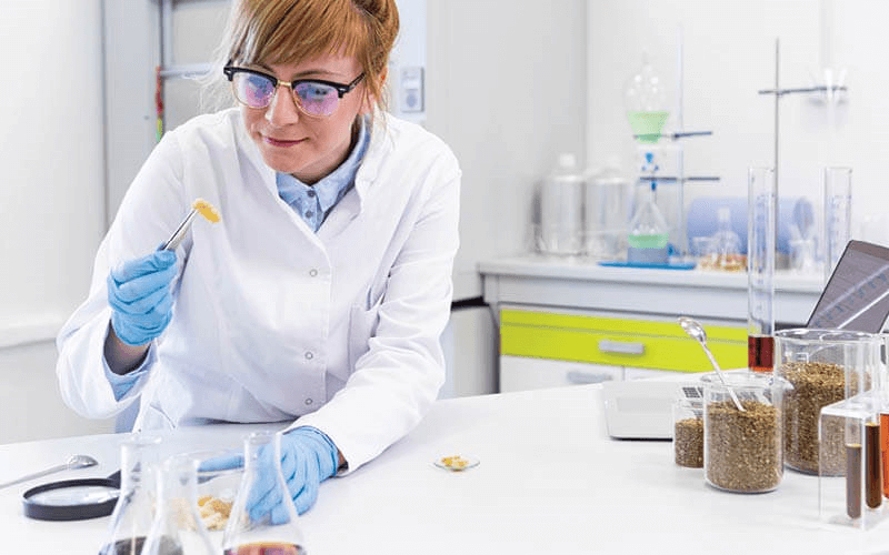 Scientist examining cannabis extract in a lab