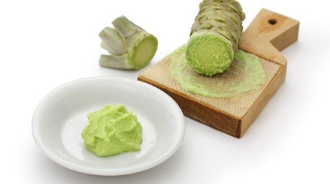 Wasabi, an Asian plant with a strong flavor has gained popularity in recent years. Turns out, the semi-aquatic plant is well suited to...