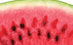 What is the ideal nutrient ppm concentration for watermelons, and what special care is needed to grow square watermelons?