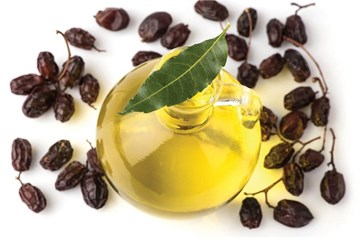 Neem Oil: The Answer to a Pest-Free Organic Garden