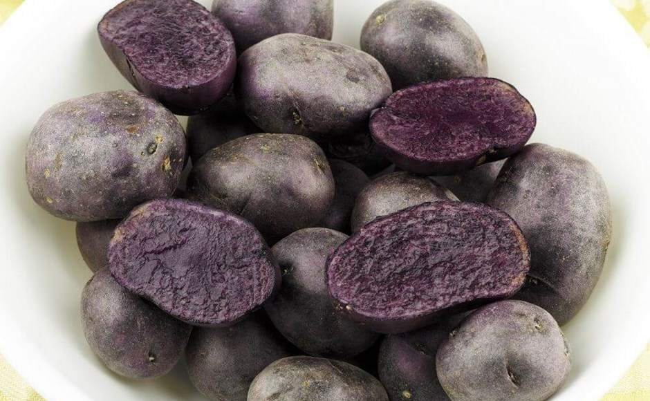 Out of the Blue: Growing Blue and Purple Potatoes