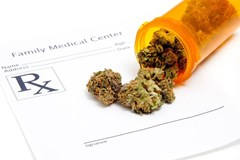 Meeting Medical Cannabis Needs with More Stable Genetics