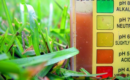Perfecting the pH of Your Hydroponic Nutrient Solution