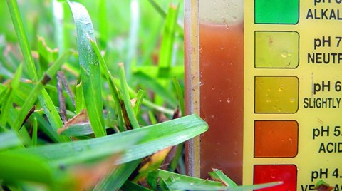 The pH levels in small hydroponic systems can often be overlooked if a grower is focusing more on monitoring a solution's EC or TDS,...