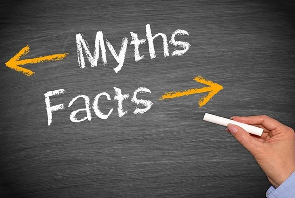 Debunking Common Gardening Myths: Separating Fact from Fiction