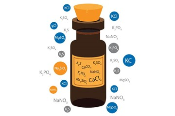 10 Facts on Salts