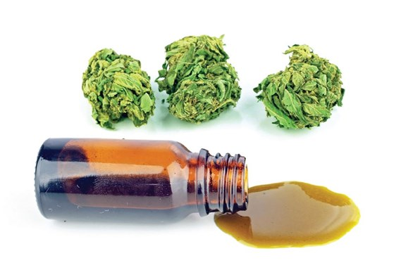 Comprehending Your Cannabis Test Results