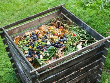How to Dispose of Food Waste in a Natural, Earth-friendly Way