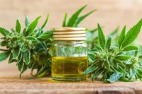 The Powerful Role CBD Plays in Relieving Multiple Chemotherapy-Induced Symptoms