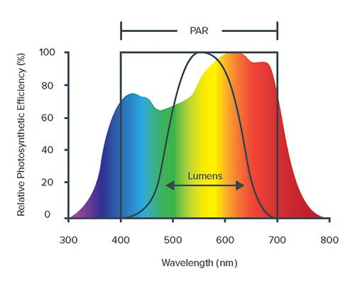 Graph depicting the average photosynthetic efficiency of plants and the spectral range that photosynthetically active radiation (PAR) and lumens are measured.