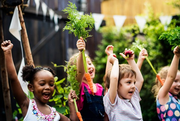 Back to School Fun: Hydroponic and Garden Projects