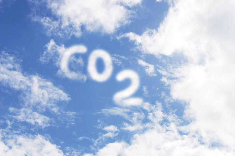Bring on the CO2 in Your Indoor Garden & on the CO2 in Your Indoor Garden