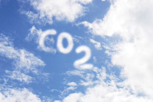 Bring on the CO2 in Your Indoor Garden